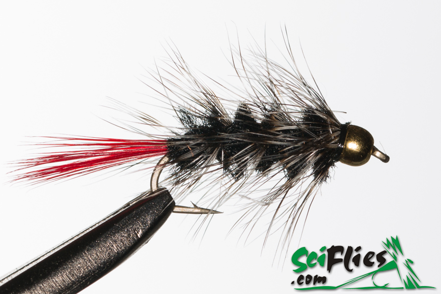 Red Tail Woolly Worm – Black
