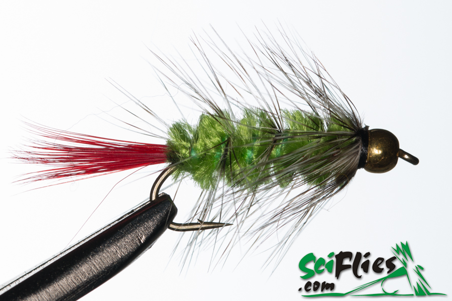 Red Tail Woolly Worm – Green