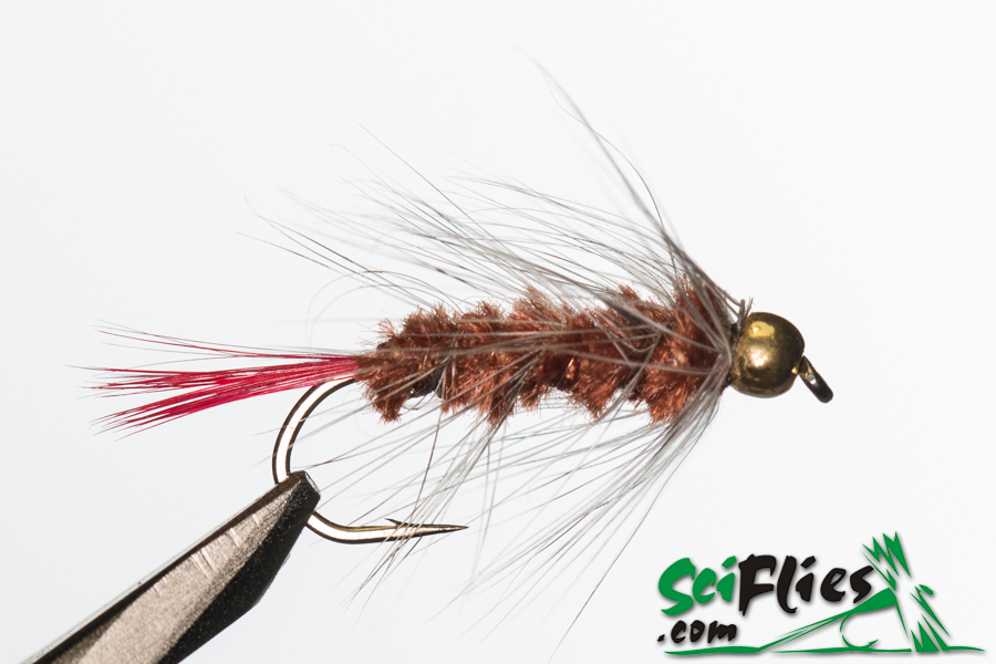 Red Tail Woolly Worm – Brown