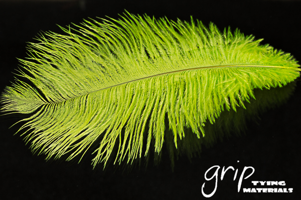 Ostrich Plumes 9 – Chartreuse
