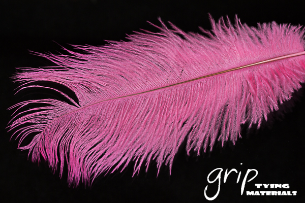 Ostrich Plumes 9 – Pink