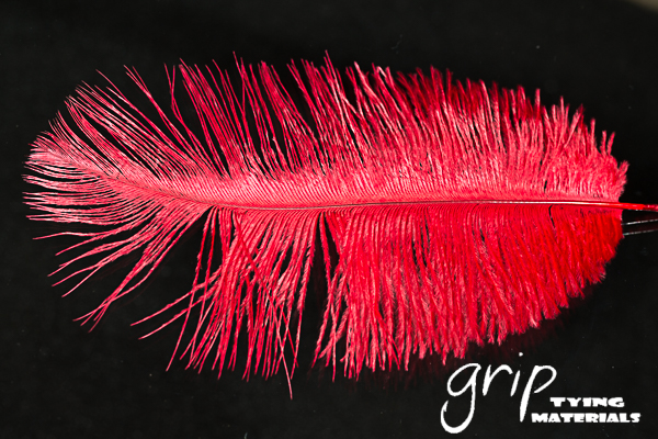 Ostrich Plumes 9 – Red