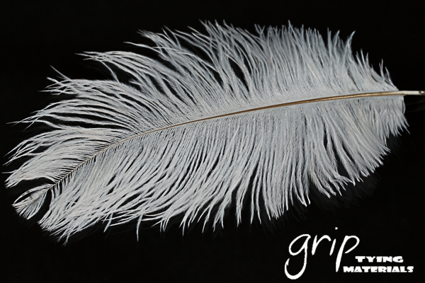 Ostrich Plumes 9 – White